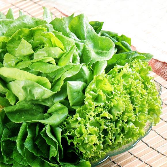 有机蔬菜随机配礼包(叶菜类)