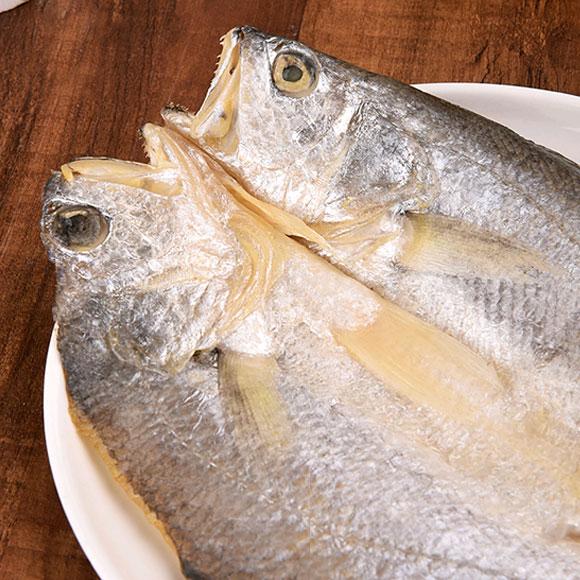 东海大黄鱼
