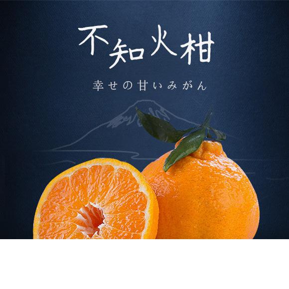四川眉山不知火丑柑 出口日本 值得品鉴
