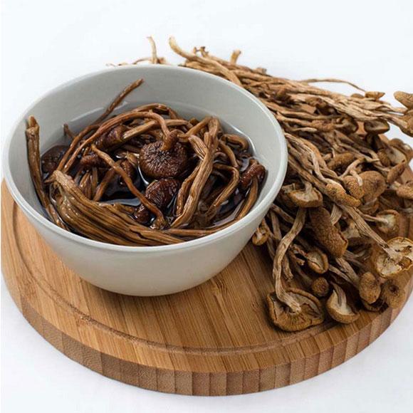 禾煜茶树菇