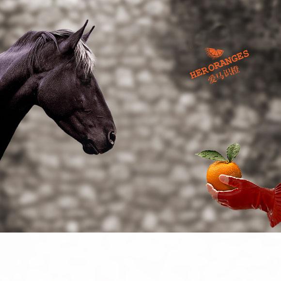 愿舍财富,得与卧龙先生话闲茶。 不舍口福,能与伯乐慧眼识良橙。