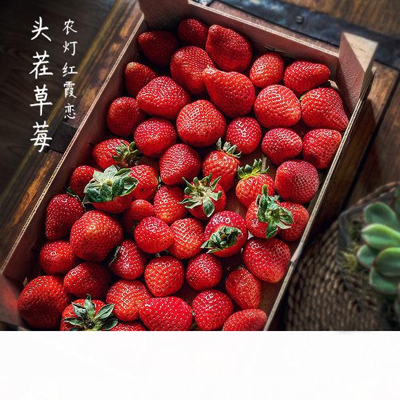 红霞之恋草莓 微甜的小幸运