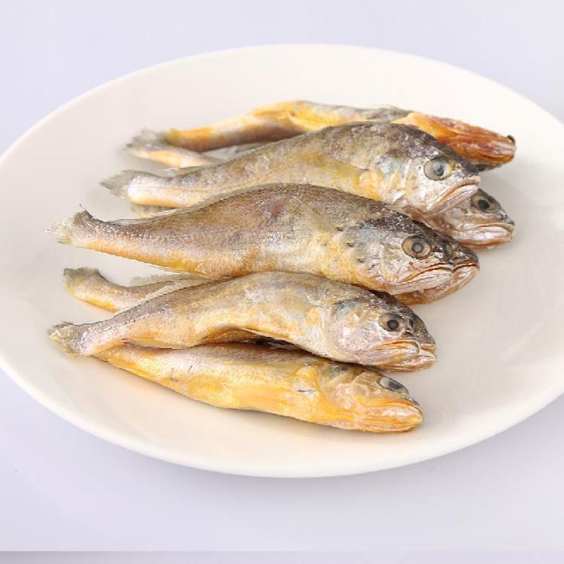 舟山野生小黄鱼(7--8条)