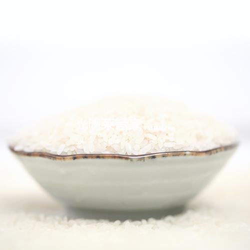 海丰香而糯大米