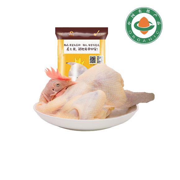 驼龙山有机老母鸡