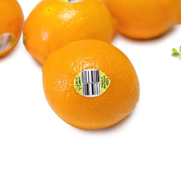 新西兰柠檬 4只装