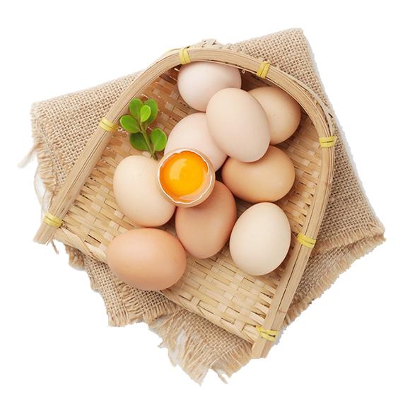 安徽土鸡蛋