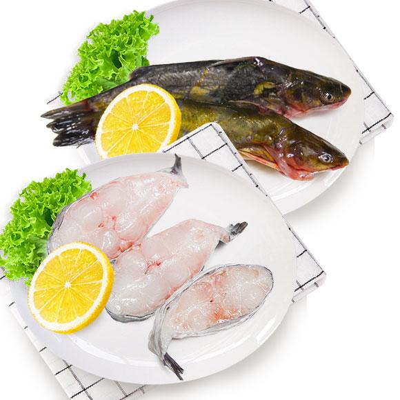 光明渔业昂刺(冰鲜)+鮰鱼块(冰鲜)