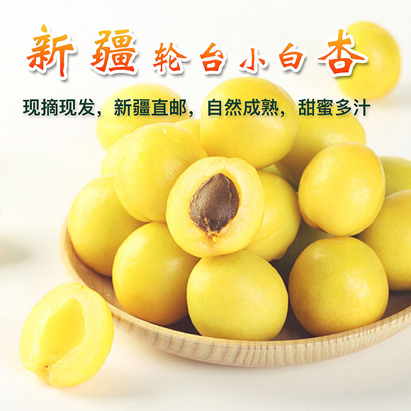 新疆輪臺小白杏(產地直發)