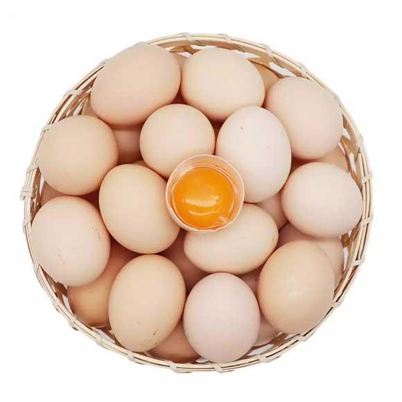 安徽果林土鸡蛋(40枚)