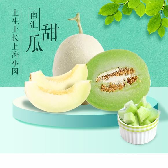 春日里的小清新 南汇甜瓜系列 微笑有多甜,我就有多甜