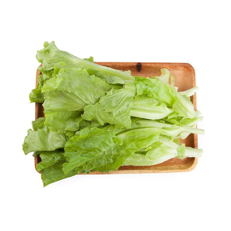 青浦有机叶生菜