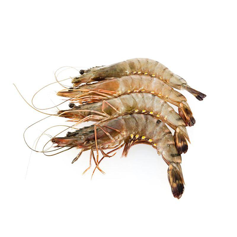 生冻黑虎虾