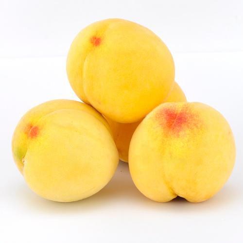 金山金蜜黄桃12只装