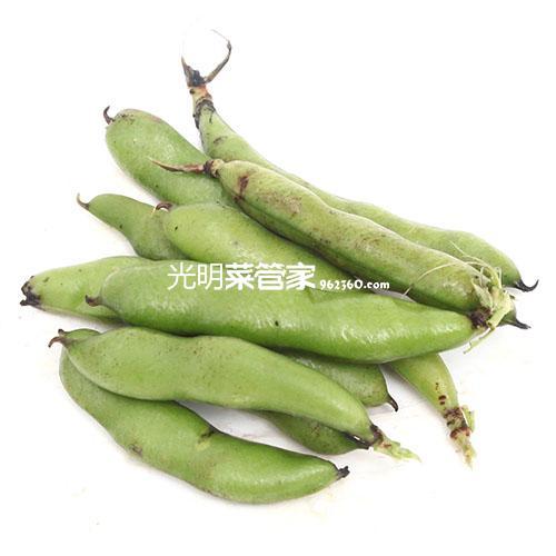 青浦有机蚕豆