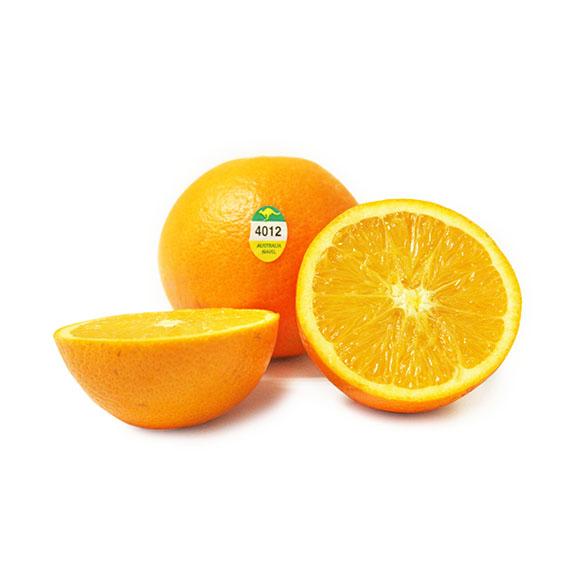 澳橙12只装
