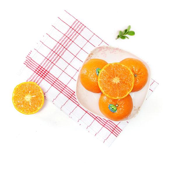 以色列蜜橘