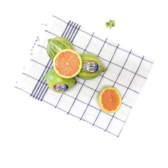 美国斑马粉柠檬礼盒装