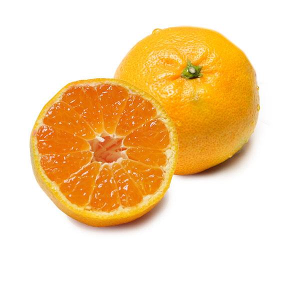 东江湖蜜橘1.5kg