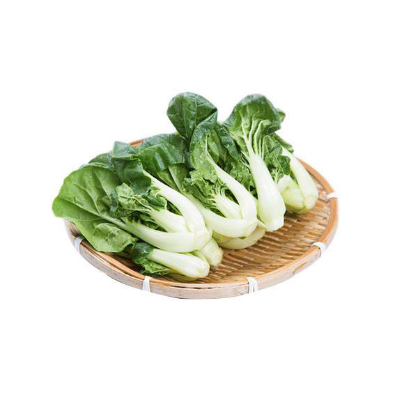 青浦有机奶白菜