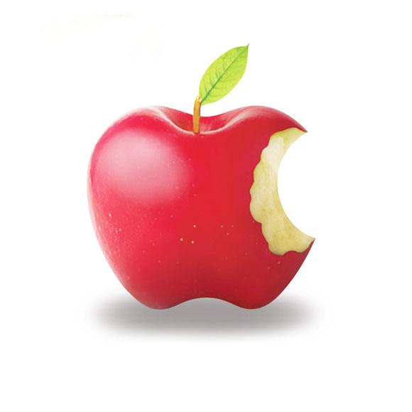 爱疯苹果mini