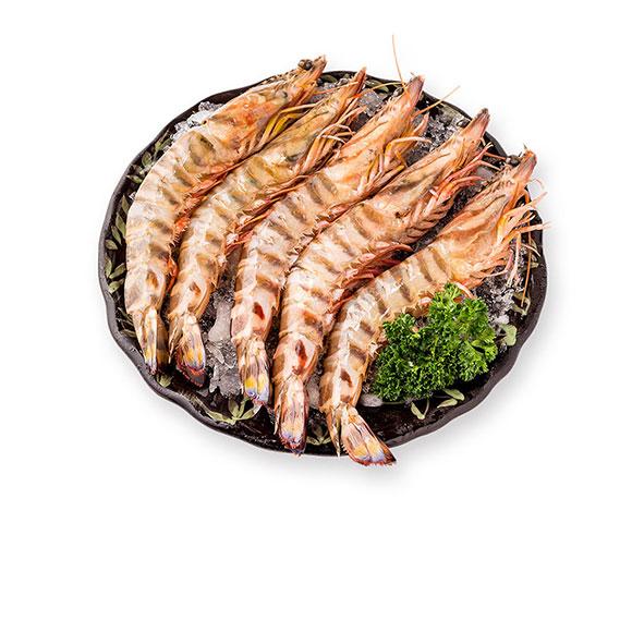 舟山野生竹节虾