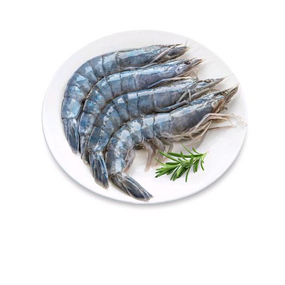 文莱蓝虾盒装