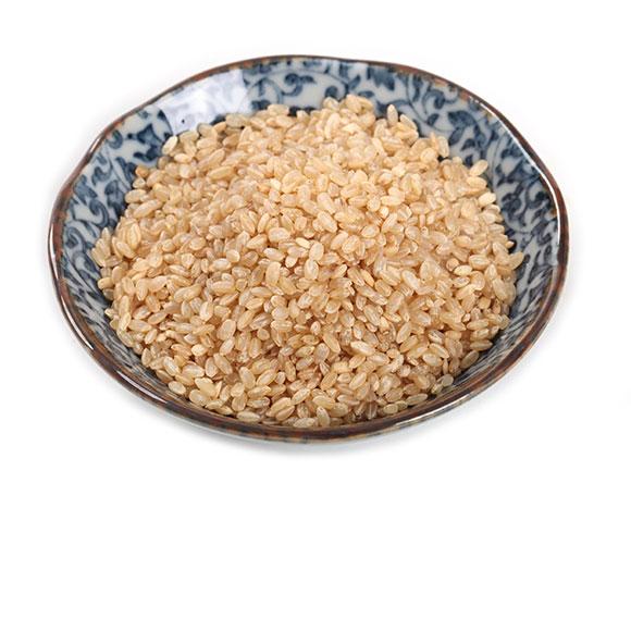 禾下土有机糙米