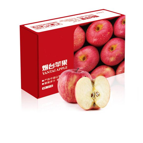 烟台红富士苹果 12个 净重2.6kg以上 单果190-240g 新鲜水果
