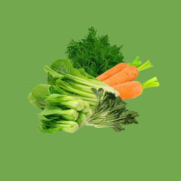 有機蔬菜禮盒