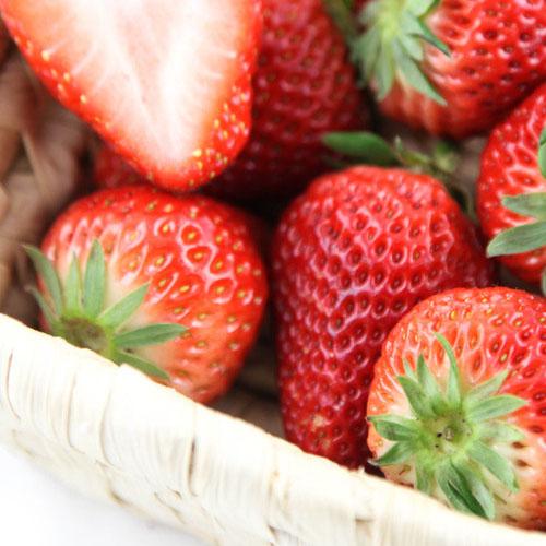 青浦红霞草莓