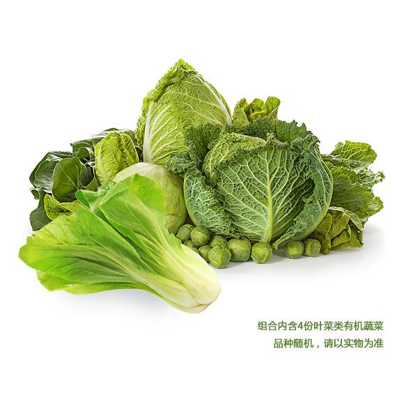 有機蔬菜隨機配禮包B(葉菜類4份)