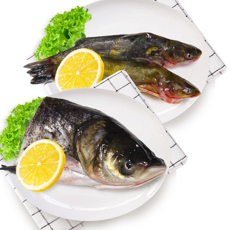 光明渔业花鲢头 (冰鲜)+昂刺(冰鲜)