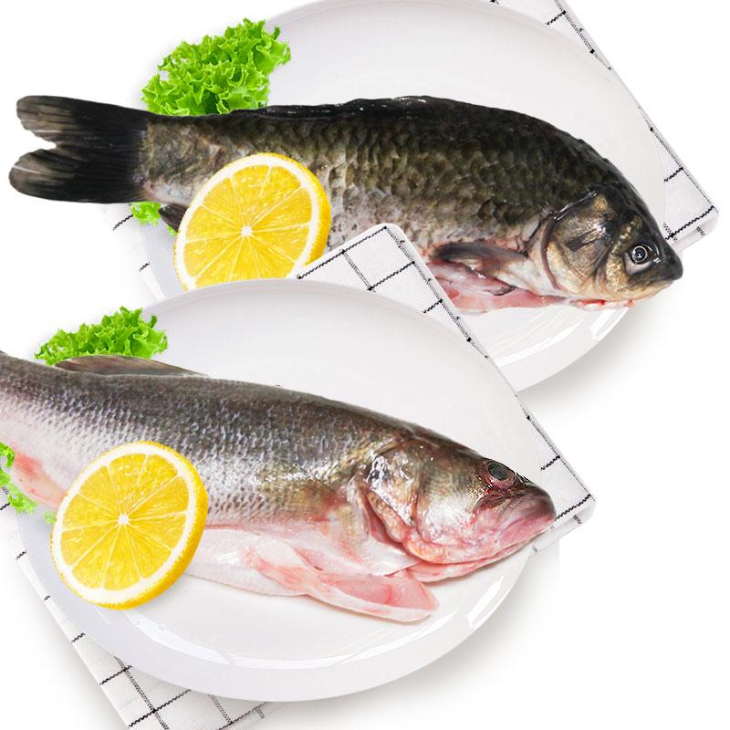 光明渔业小鲫鱼(冰鲜)+鲈鱼(冰鲜)