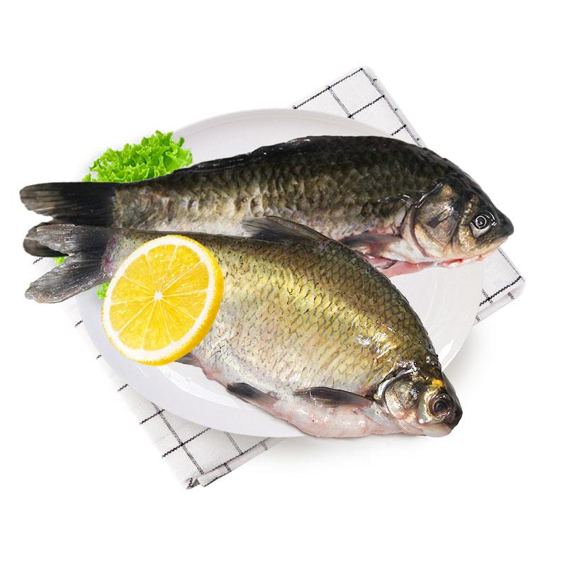 光明渔业小鲫鱼(冰鲜)+鳊鱼(冰鲜)