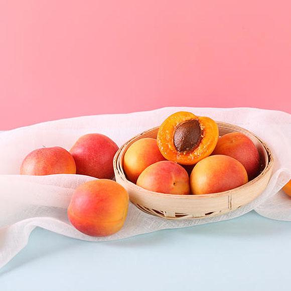 新疆普通装小红杏(基地直供)
