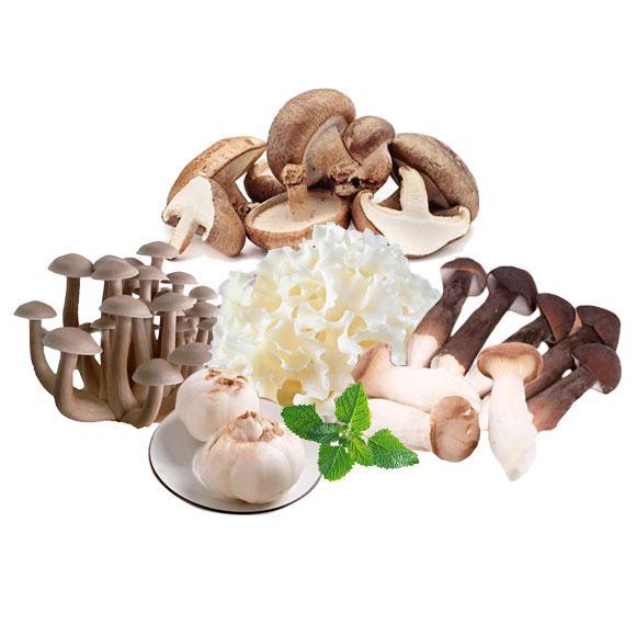 新鮮菌菇組合B