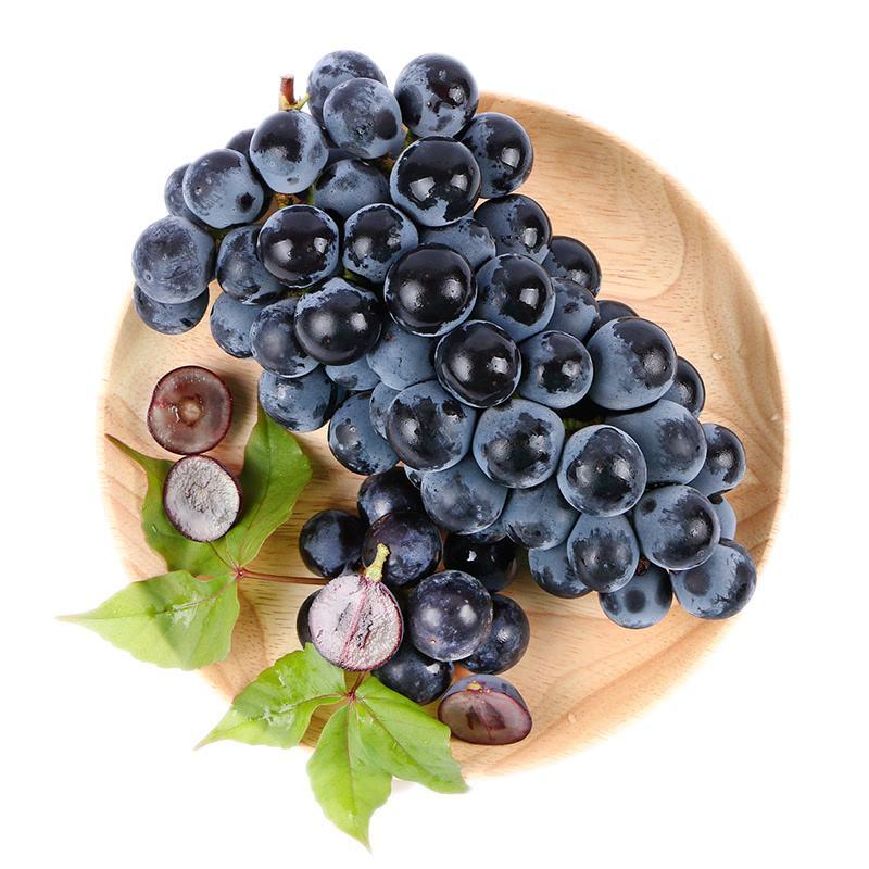 马陆夏黑葡萄