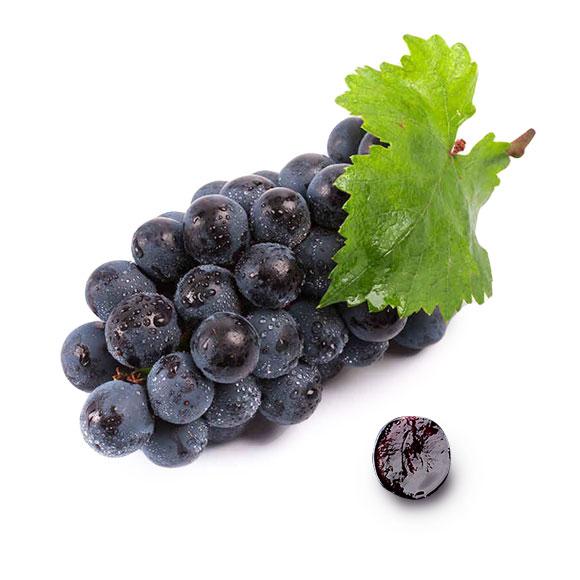 新疆吐鲁番黑加仑葡萄(基地直供)