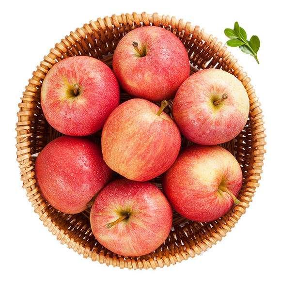 陕西嘎啦苹果(新果)
