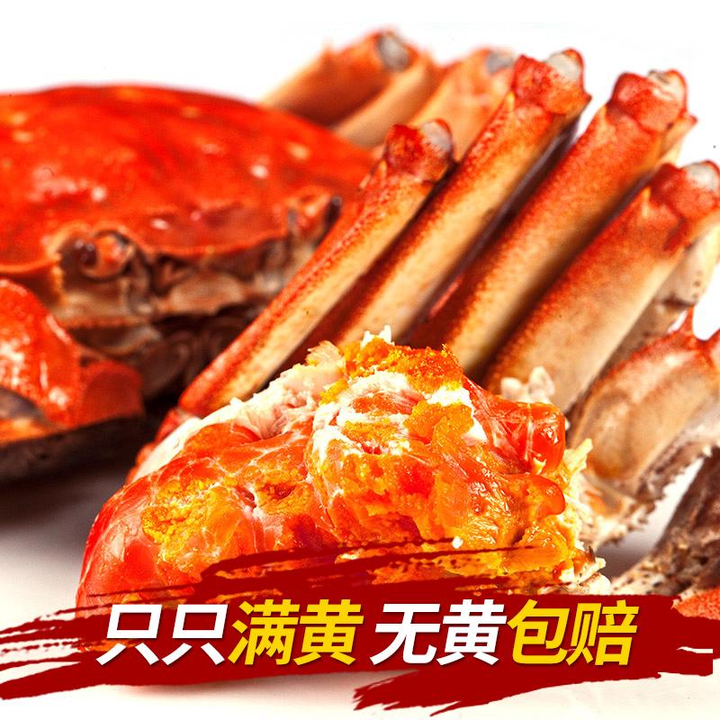 蟹貴妃陽澄湖大閘蟹998型(卡券)
