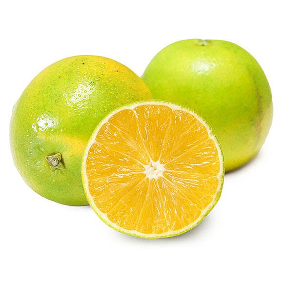 云南冰糖橙(管家裝)
