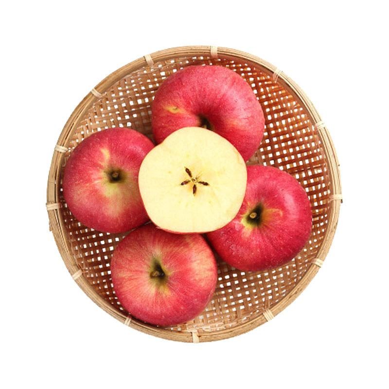 云南竹园村苹果