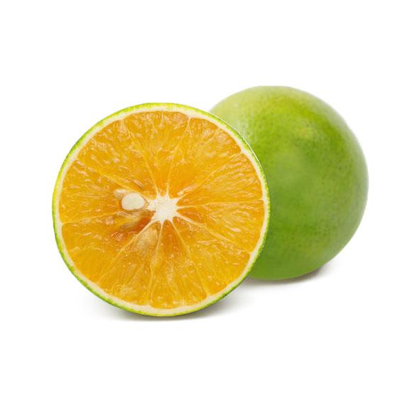 海南绿橙(管家装)