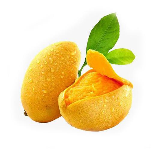 海南小台农芒果