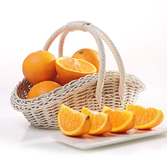 湖北秭归伦晚脐橙