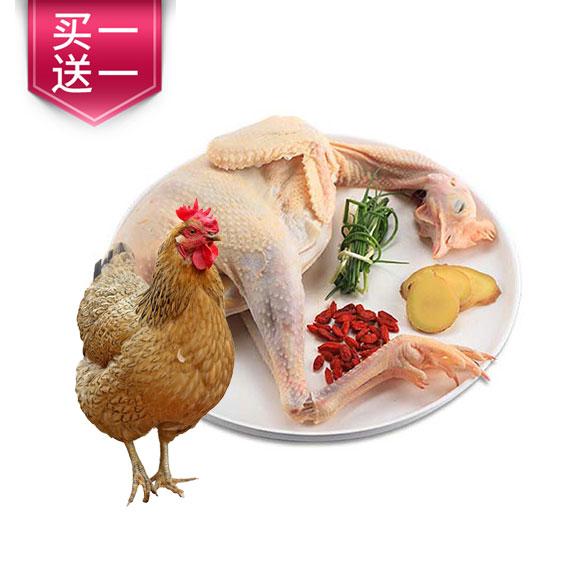 安徽老母鸡(365天)(买一送一)