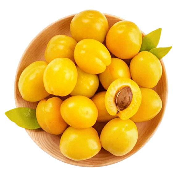新疆小白杏1.5kg